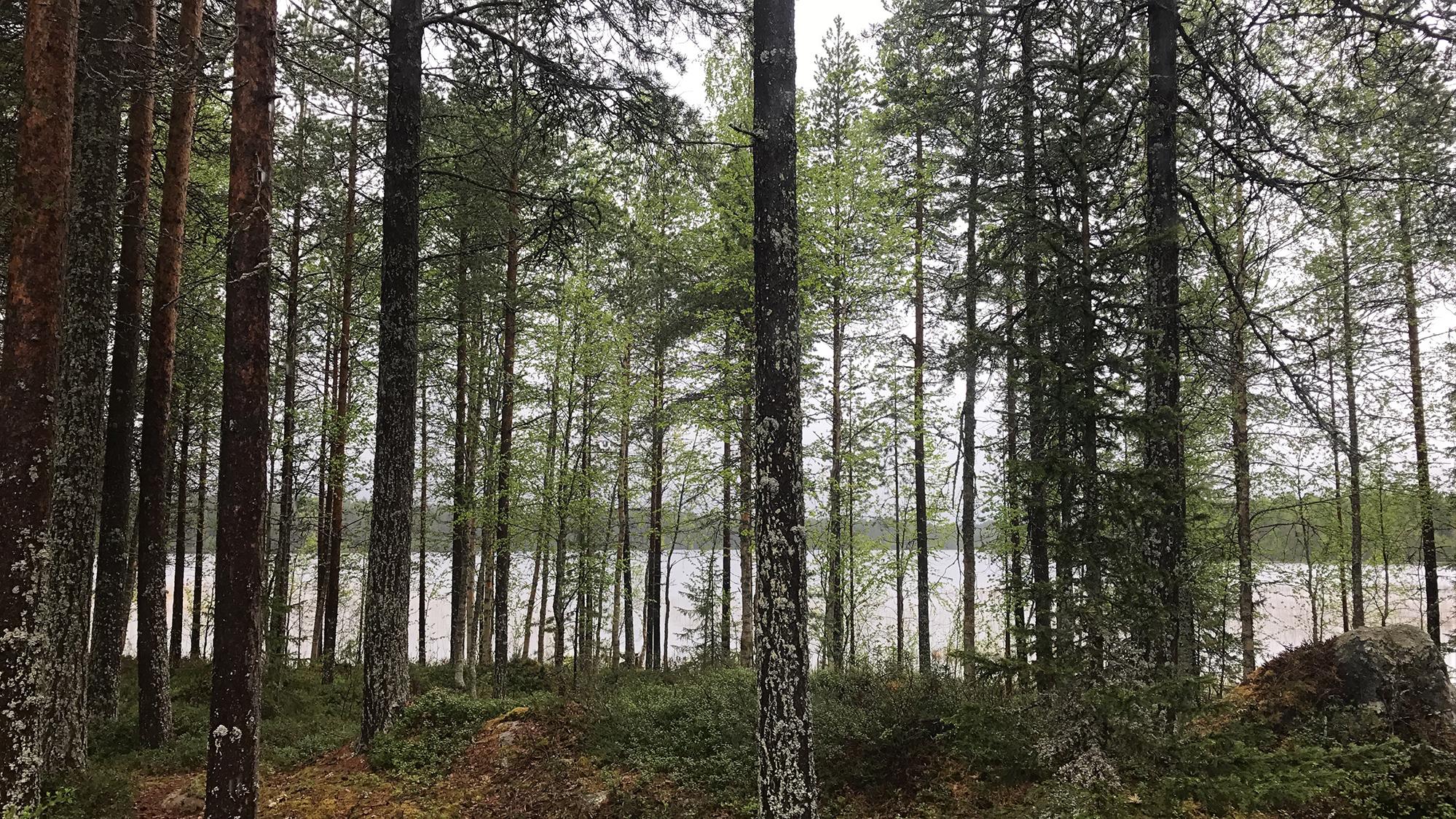 Lake Pikku-Rävä