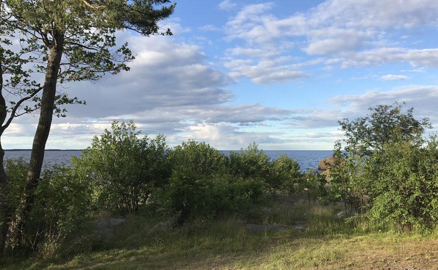 Vallvik